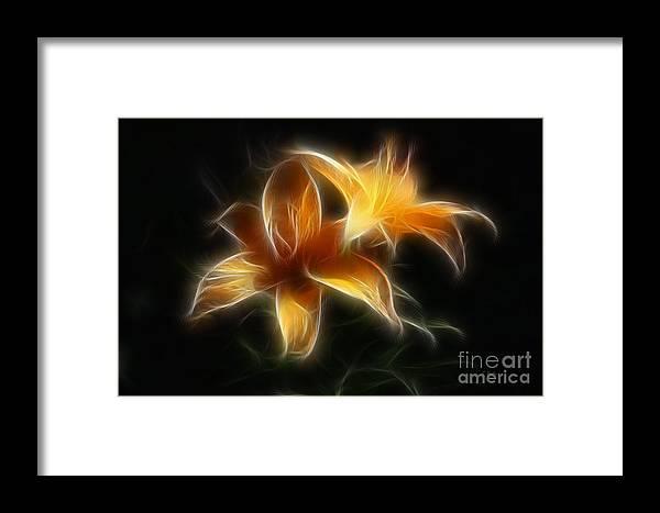 Lilies Framed Print featuring the digital art Wispy Lilies by Teresa Zieba