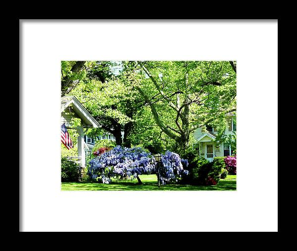 Spring Framed Print featuring the photograph Wisteria On Lawn by Susan Savad
