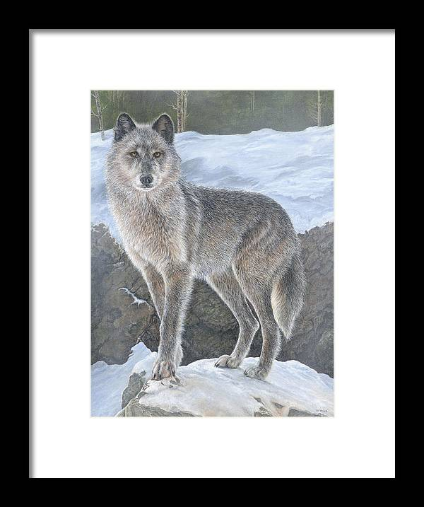 Wolf Framed Print featuring the painting Wolf by Edmund Price