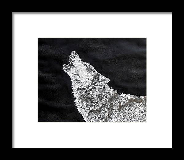 Pencil Framed Print featuring the drawing Wolf Howl by Stan Hamilton