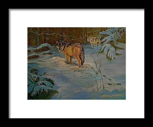 Wolves Framed Print featuring the painting Wolves Of Maine by Alan Carlson