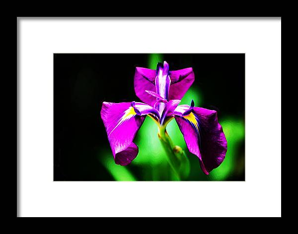 Flower Framed Print featuring the painting Wonderful Work Thank You God by Jonathan Galente