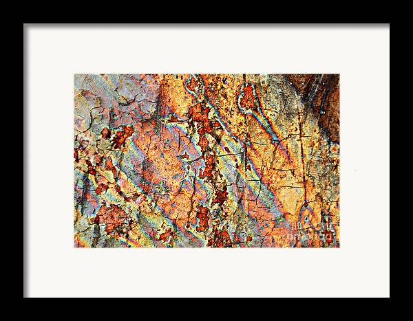 Rust Framed Print featuring the photograph Wood And Rust by Carol Groenen