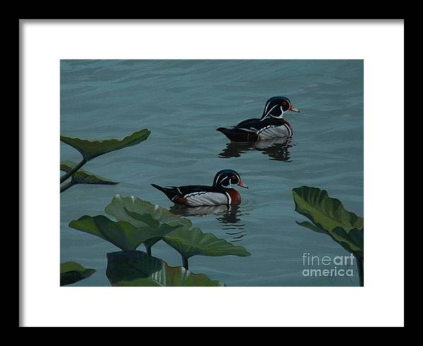 Ducks Framed Print featuring the painting Wood Ducks On Lake Morton by Michael Nowak
