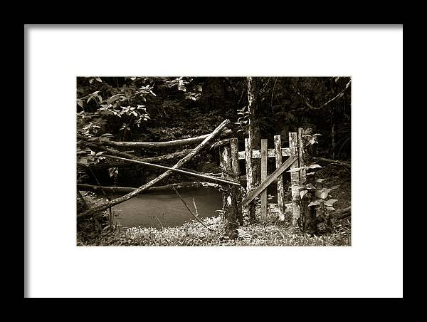 Wood Framed Print featuring the photograph Wood Fence by Amarildo Correa