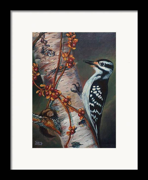 Bird Framed Print featuring the painting Wood Pecker by Sylvia Stone