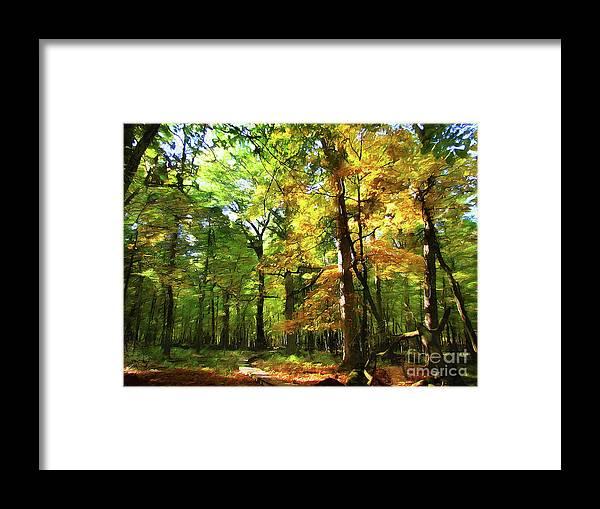 Cedric Hampton Framed Print featuring the photograph Wood Plank Trail by Cedric Hampton