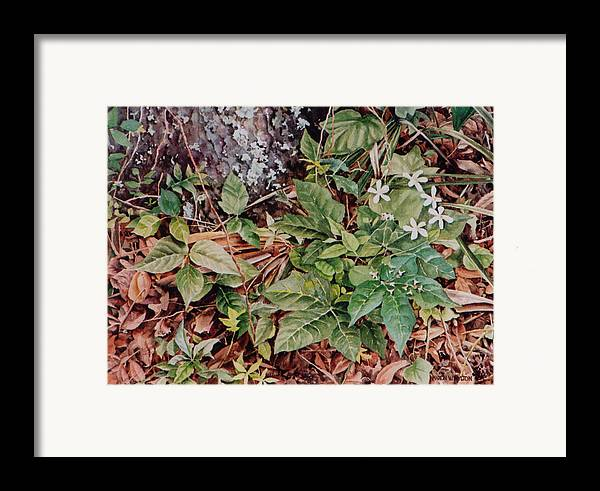 Flowers Framed Print featuring the painting Woodland Blossoms by Marion Hylton