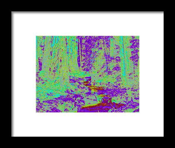 Framed Print featuring the digital art Woodland Forest D4 by Modified Image