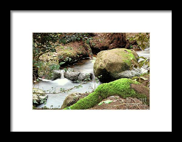 Landscape; Wood Land Walk Framed Print featuring the photograph Woodland Stream by Ann O Connell