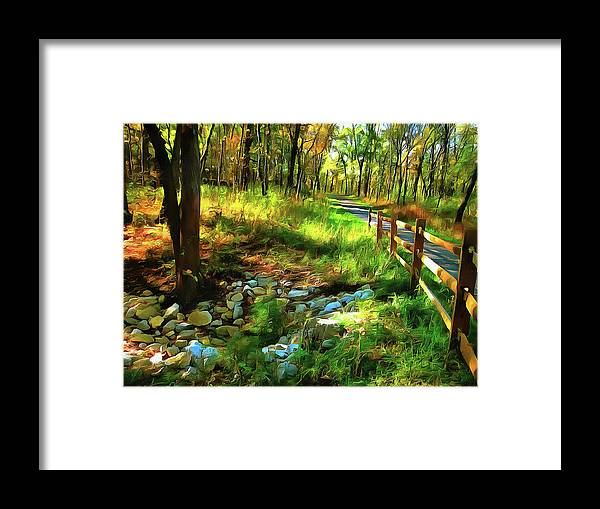 Cedric Hampton Framed Print featuring the photograph Woodland Symphony by Cedric Hampton
