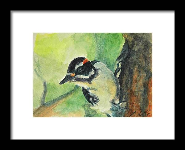 Wildlife Framed Print featuring the painting Woodpecker by Stephanie Allison
