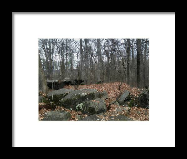 Gettysburg Framed Print featuring the photograph Woods Of Big Round Top by Shelley Smith