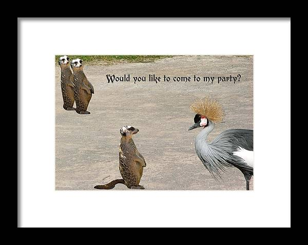 Meerkat Framed Print featuring the photograph Would You Like To Come To My Party by Fun Cards