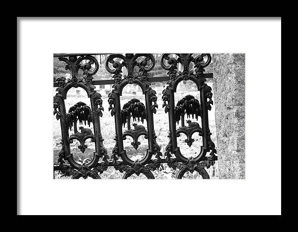 Gate Framed Print featuring the photograph Wrought Iron Gate -west Epping Nh Usa by Erin Paul Donovan
