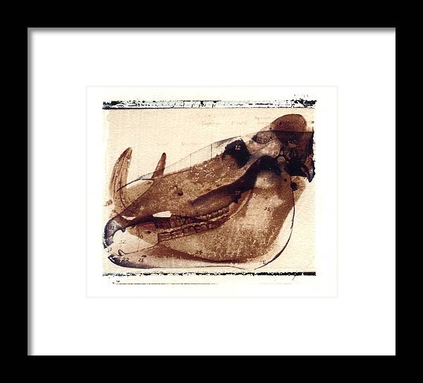 Polaroid Transfer Framed Print featuring the photograph X Ray Terrestrial No. 6 by Jane Linders