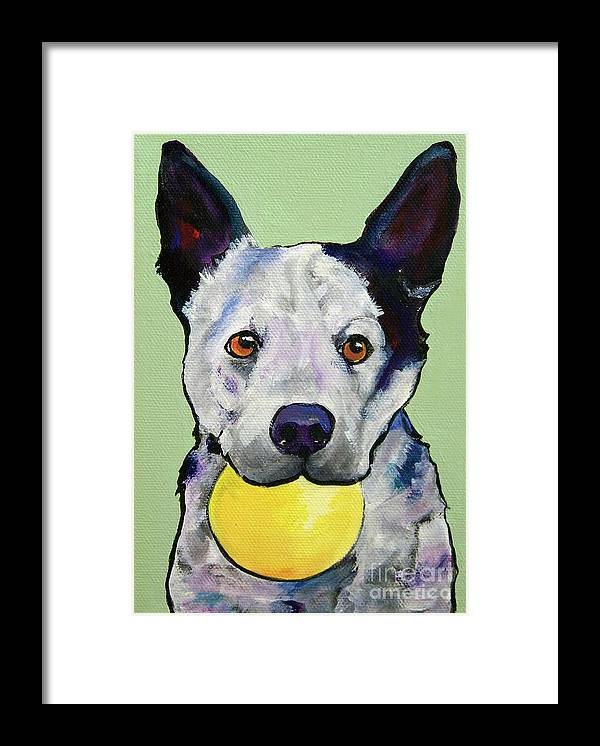 Australian Cattle Dog Framed Print featuring the painting Yellow Ball by Pat Saunders-White