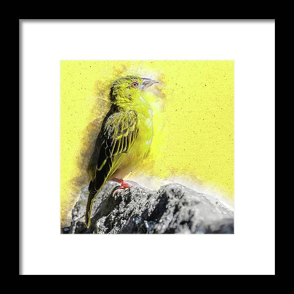 Yellow Framed Print featuring the digital art Yellow Bird by Art By Jeronimo