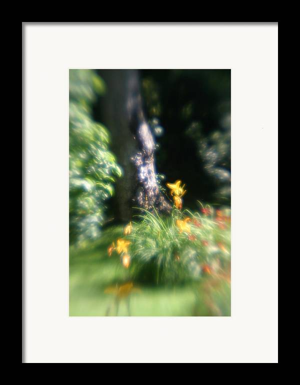 Framed Print featuring the photograph Yellow Flowers In Monets Garden by Jennifer McDuffie