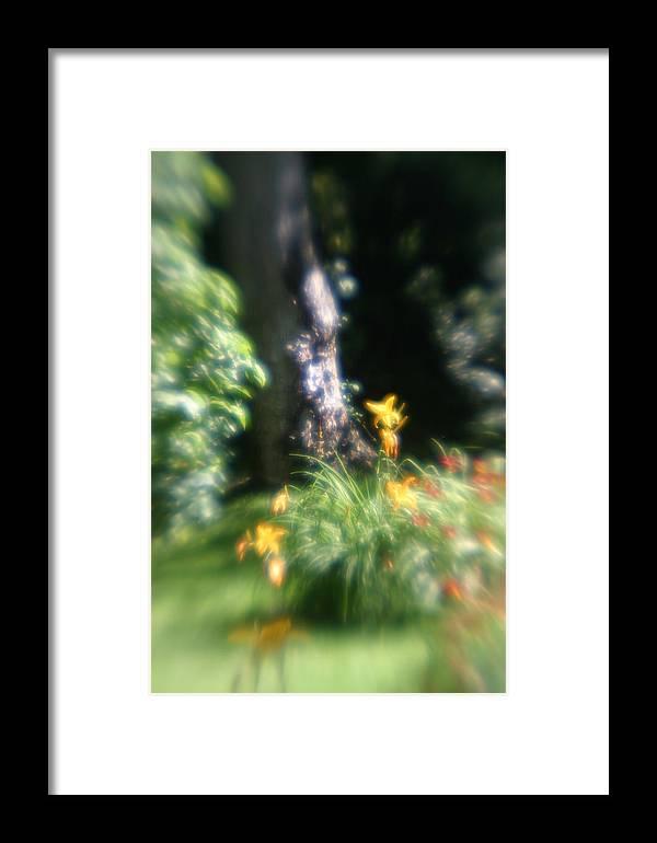 Framed Print featuring the photograph Yellow Flowers In Monets Garden by Jennifer McDuffie