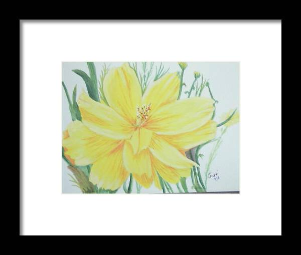 Flower Framed Print featuring the painting Yellow Garden Flower by Hilda and Jose Garrancho