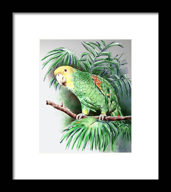 Bird Framed Print featuring the digital art Yellow-headed Amazon Parrot by Arline Wagner