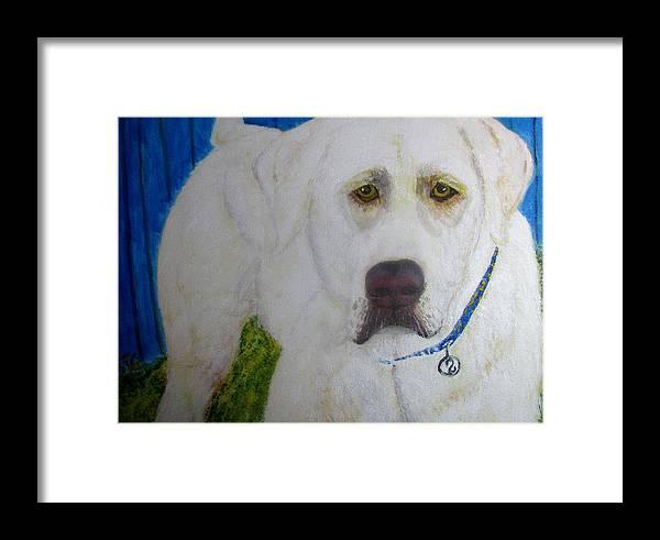 Labrador Retriever Framed Print featuring the painting Yellow Labrador Retriever Original Acrylic Painting by Barbara Giordano