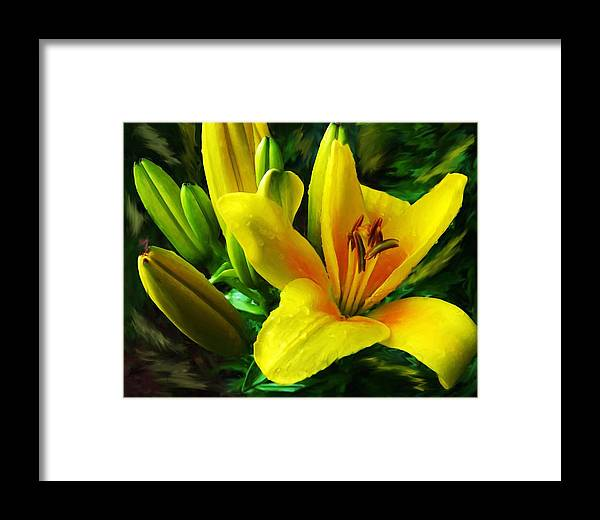 Lily Framed Print featuring the digital art Yellow Lily by Jim Darnall