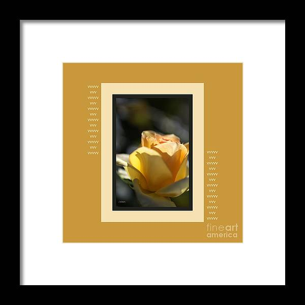 Rose Framed Print featuring the photograph Yellow Rose Bud Dreams With Design by Joy Watson