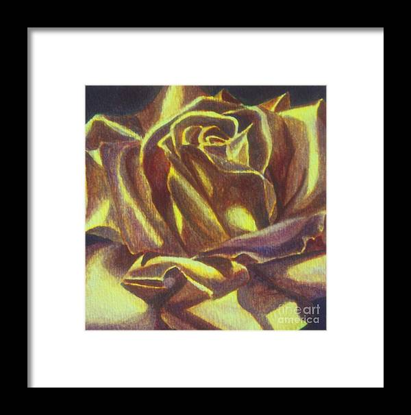 Rose Framed Print featuring the painting Yellow Rose by Emily Young