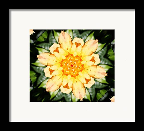 Flowers Framed Print featuring the photograph Yellow Rose Kaleidoscope by Cathie Tyler