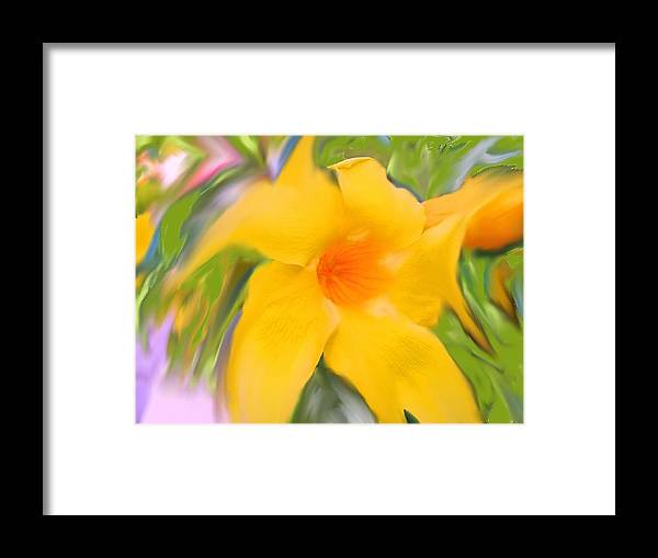 Yellow Framed Print featuring the photograph Yellow Stretch by Ian MacDonald