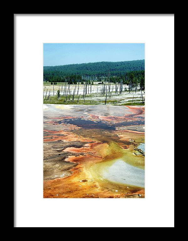Yellowstone National Park Framed Print featuring the photograph Yellowstone Park Firehole Spring Area Vertical 02 by Thomas Woolworth