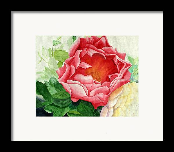 Red Rose Watercolor Painting Framed Print featuring the painting Yes It Is A Rose by Robert Thomaston