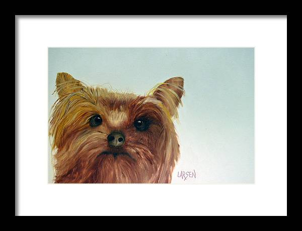 Framed Print featuring the painting Yorkshire Terrier by Dick Larsen