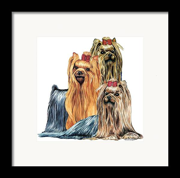 Yorkshire Terrier Framed Print featuring the drawing Yorkshire Terriers by Kathleen Sepulveda