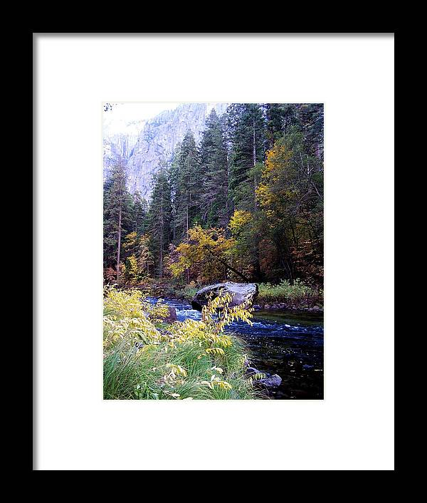 Yosemite Framed Print featuring the photograph Yosemite 1 by Vijay Sharon Govender