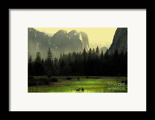 Landscape Framed Print featuring the photograph Yosemite Village Golden by Wingsdomain Art and Photography