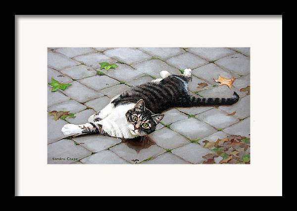 Cat Framed Print featuring the painting You Called? by Sandra Chase