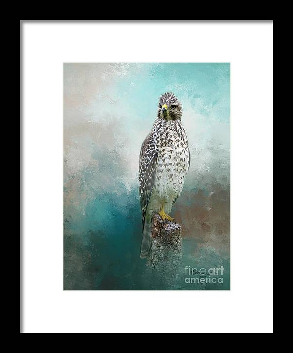 Bird Framed Print featuring the mixed media Young Eyes by Marvin Spates