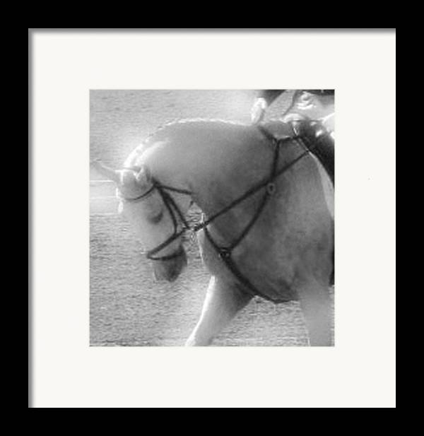 Horse Framed Print featuring the photograph Your Are Doing Such A Good Job by Donna Thomas