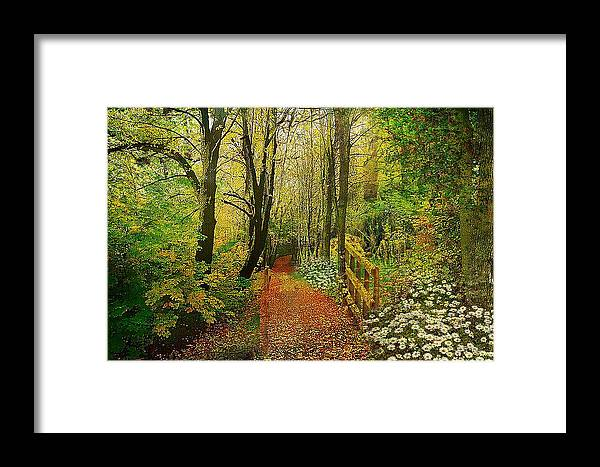 Zac Framed Print featuring the mixed media Zac's Fav Walk by Clive Littin