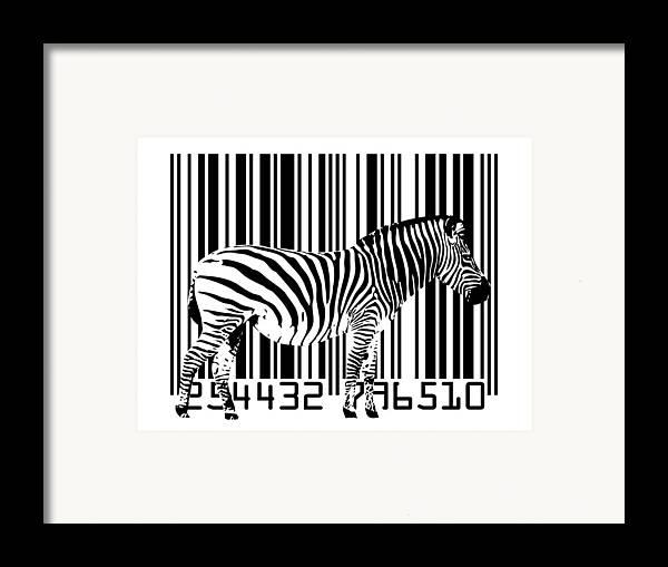 Zebra Framed Print featuring the digital art Zebra Barcode by Michael Tompsett