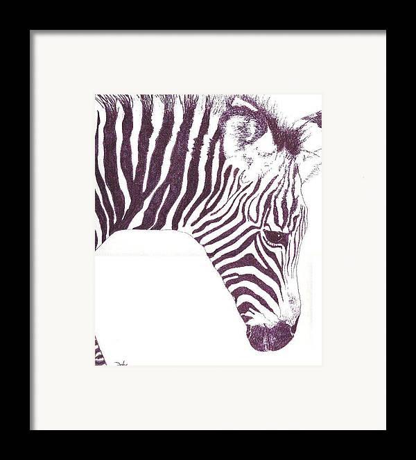 Zebra Framed Print featuring the painting Zebra Colt by Debra Sandstrom