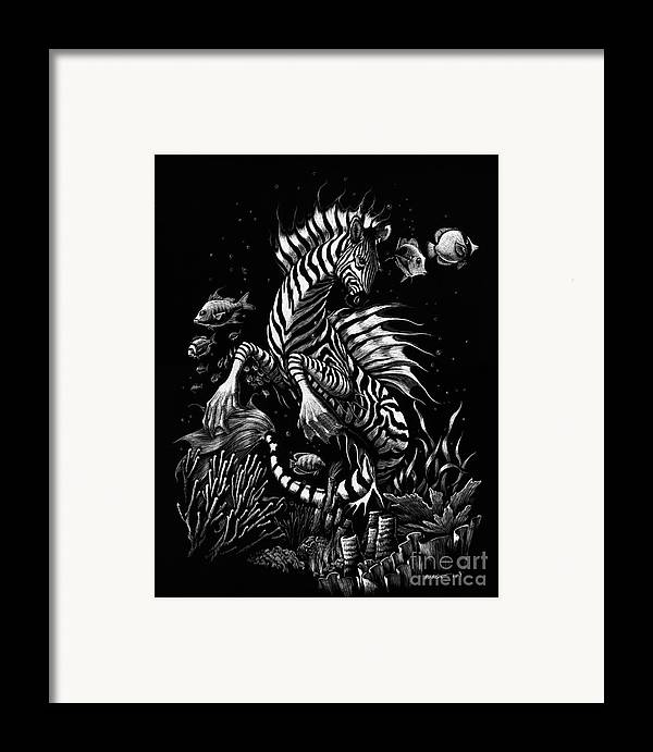 Seahorse Framed Print featuring the drawing Zebra Hippocampus by Stanley Morrison