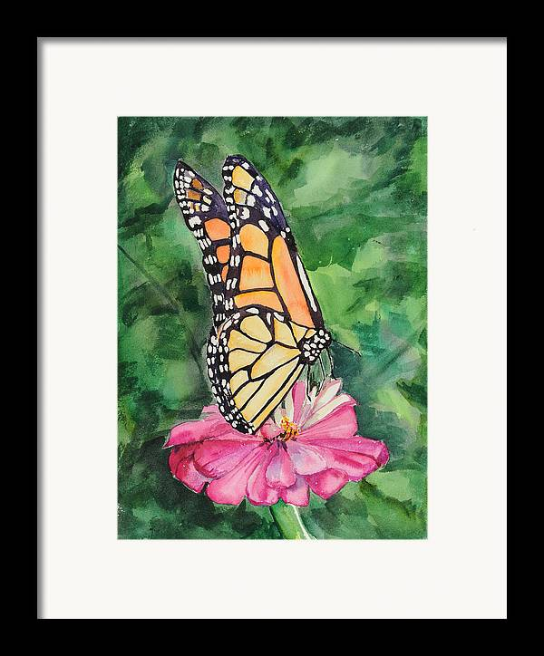 Watercolor. Butterfly Framed Print featuring the painting Zinnia And Monarch by Judy Loper