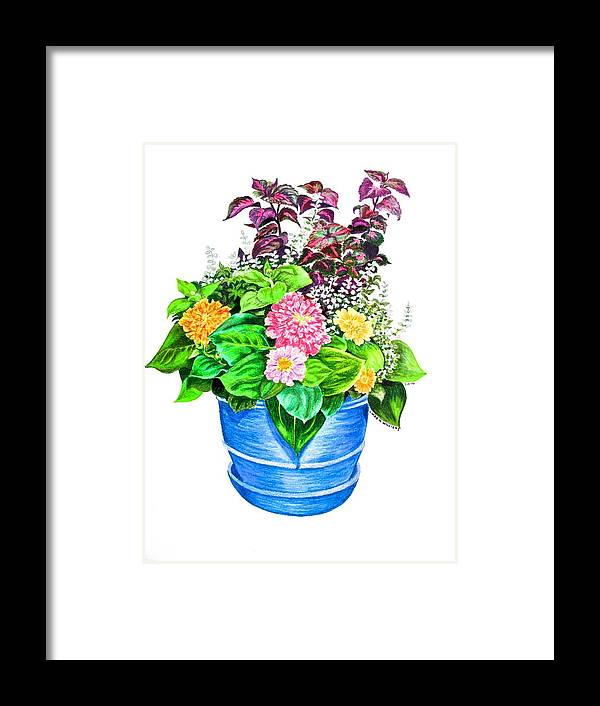 Still Life Framed Print featuring the drawing Zinnia Container Garden by Linda Williams
