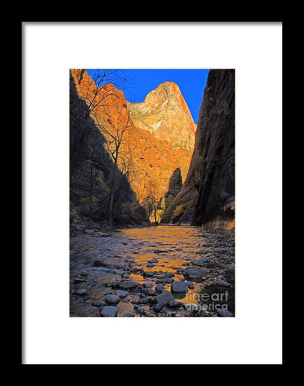 Utah Framed Print featuring the photograph Zion by Dennis Hammer