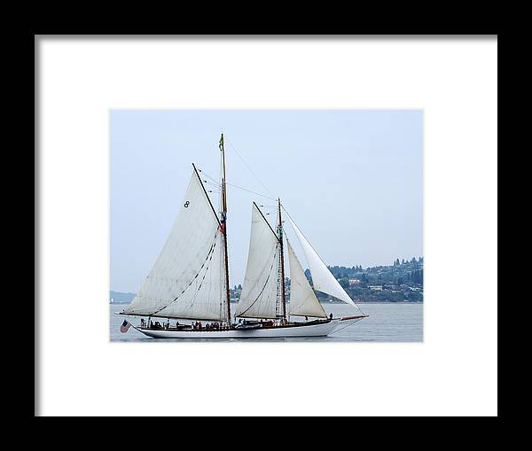 Tall Ships Framed Print featuring the photograph Zodiac by Sonja Anderson