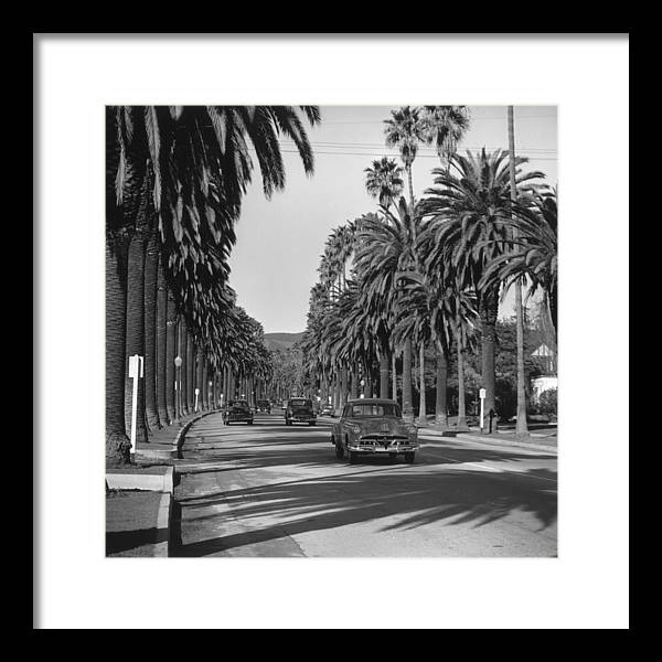 Shadow Framed Print featuring the photograph Cannon Drive by Slim Aarons